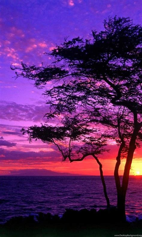 Purple Sunset Wallpapers HD Images New Desktop Background
