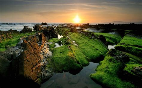 Beauty Of Nature In India Wallpaper | HD Beach Wallpapers