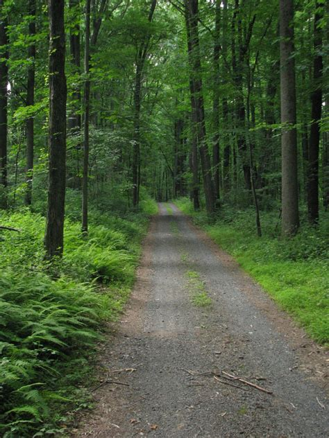 French Creek State Park – Pennsylvania Attractions
