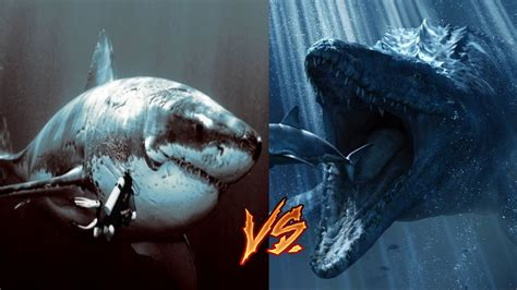 Megalodon vs Mosasaur-My Thoughts - YouTube