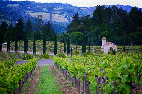 The 9 Best Napa Valley Tours of 2020